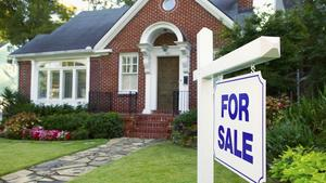 Housing market cools but sales remain hot in suburbs