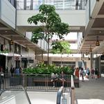 New Oahu retail spaces will help to boost growth for 2016