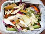 Planned $10M Hawaii compost facility delayed