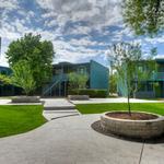 New HFF team flips Austin multifamily properties at feverish pace