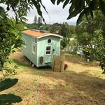 Hawaiian nonprofit thinking small for homesteads, as in tiny homes
