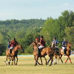 Investment group sues Saratoga Polo owners