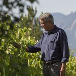 In search of the perfect grape for Colorado wines
