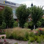 Here's where Spalding University is adding more green space