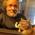 Ed Goldman: Hiding my cat's food may solve…nothing