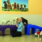 National doggie daycare franchise eyes Greater Baltimore expansion