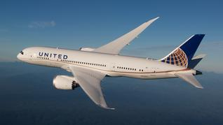 Will you avoid flying United Airlines after news about a passenger being dragged off one of its planes?