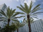 Miami Beach apartment towers complete $40 million renovation (Video)