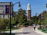 Bears establishing closer bonds with Olivet Nazarene University