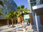 University of South Florida tops Northwestern, UC San Diego for tech research