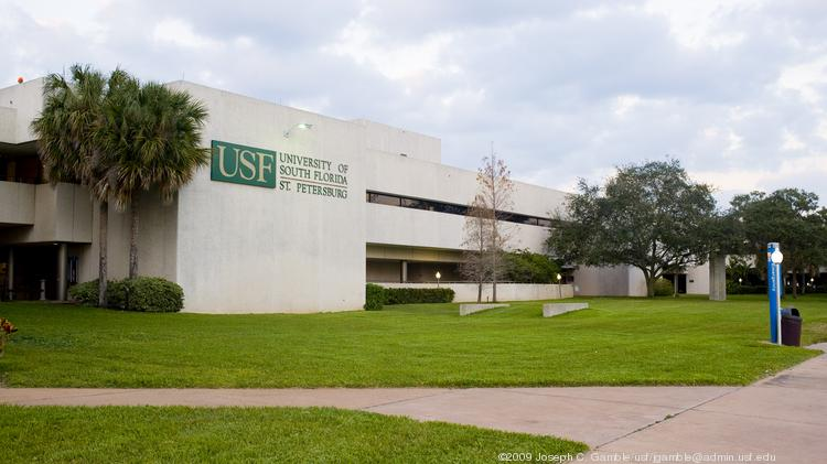 Usf St Pete Majors >> Usf St Pete Majors Top New Car Release Date