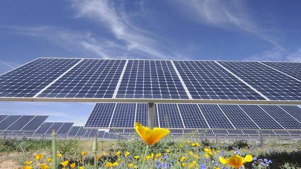 Arizona is a U S  leader of installed corporate solar