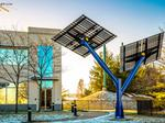 Chapel Hill entrepreneur wants to make solar mainstream with 'Solar Trees'