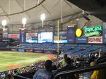 Forbes: Tampa Bay Rays worth just shy of $1B