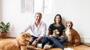 This week in N.Y.C. funding news: Stash, Stoop, DailyPay, Ollie