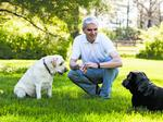 Whitebridge acquires California pet food maker