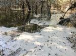 Duke Energy, environmentalists spar over whether gunk found floating in the Neuse River is coal ash