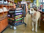 PetSmart to acquire Chewy