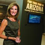 Developing Arizona's Brand: State tries to put new shine on tarnished image