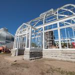 Botanical Gardens: Working in and on glasshouses