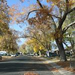 DBJ & 9News 9Neighborhoods: Aurora's Hoffman Heights traces roots to WWII (Photos)