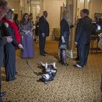 Wisconsin Humane Society's secret weapon - adorable puppies - star in fundraiser: Slideshow