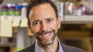 Heat Biologics offers further bladder cancer treatment outlook