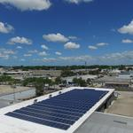 St. Pete business owner has a not-so-sunny outlook on Amendment 1