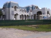 David and Jackie Siegel's 90,000-square-foot Versailles home is still far from complete.