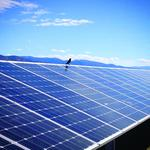 Rising solar stokes anxiety in Oregon farm country