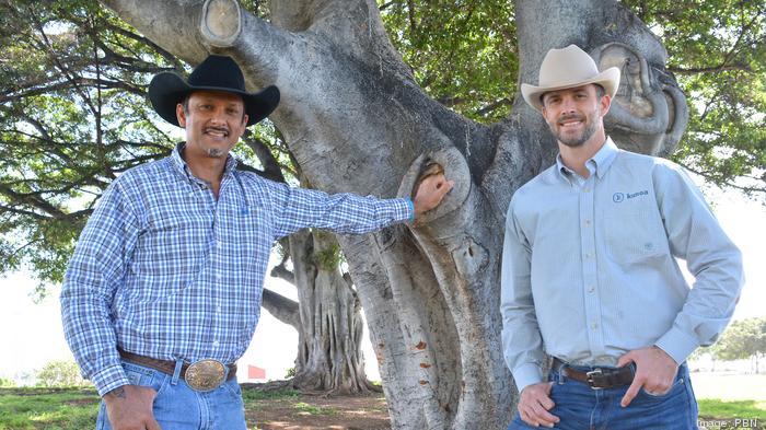 Kunoa Cattle Co. expands across Oahu, Maui with new Times Supermarkets partnership
