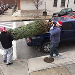 Why just order food? Tree Me-Baltimore delivers Christmas