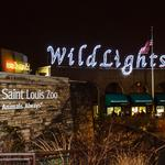 Saint Louis Zoo in running for best zoo - 5 things to know