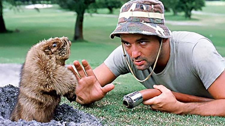 2a00af832a4c9 Bill Murray and brothers to open  Caddyshack  in Rosemont - Chicago ...