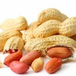A less allergenic peanut? Triad company raises nearly $1M to further research, testing