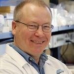 Benaroya's immunology director pursues an important molecule