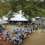 Germanfest Picnic moving downtown