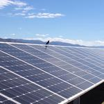 EXCLUSIVE: Oregon developer reveals plan to build one of nation's biggest solar projects