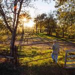 Exclusive: James Wynne family to sell off 1,040 acres of historic North Texas ranch (slideshow)