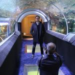 An aquarium and music displays: Go behind the scenes at our 40 Under 40 photo shoot at Discovery World