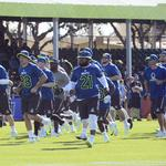 Fans find more than just a game at Disney's NFL Pro Bowl Experience
