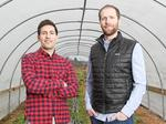Behind the scenes at Homegrown Sustainable Sandwiches' Woodinville Farm (Photos)
