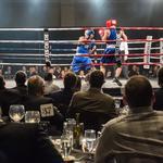 Boxing, black-tie event raises money for Milwaukee County Zoo: Slideshow