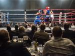Boxing, black-tie event raises money for Milwaukee County Zoo
