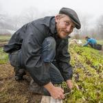 Austin's food revolution: How an urban farmer turns office waste into fresh veggies
