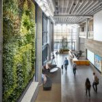 Banfield Pet Hospital shows off new environment-friendly HQ (Images)