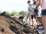 Midtown Phoenix community garden forced to close, land going to U.S. Department of Interior