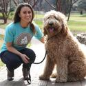 Dog-walking startup Waggle wins $750K angel investment