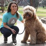 Charlotte dog-walking startup lands $750K angel investment