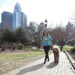 Charlotte dog-walking startup reaches $900K in equity investment